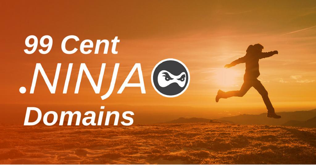 99 Cent .NINJA domains Blog