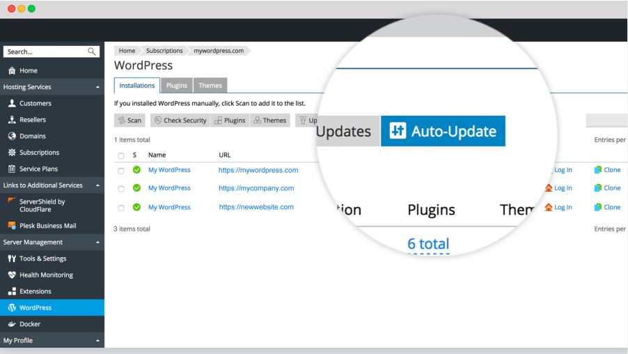 webnames wordpress hosting auto update manager