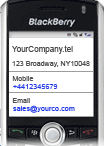 dot_tel_blackberry_business.png